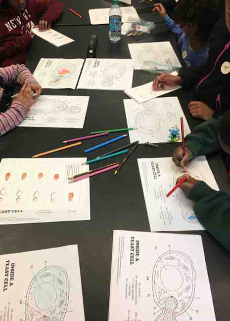 Children's activities included coloring in yeast drawings.