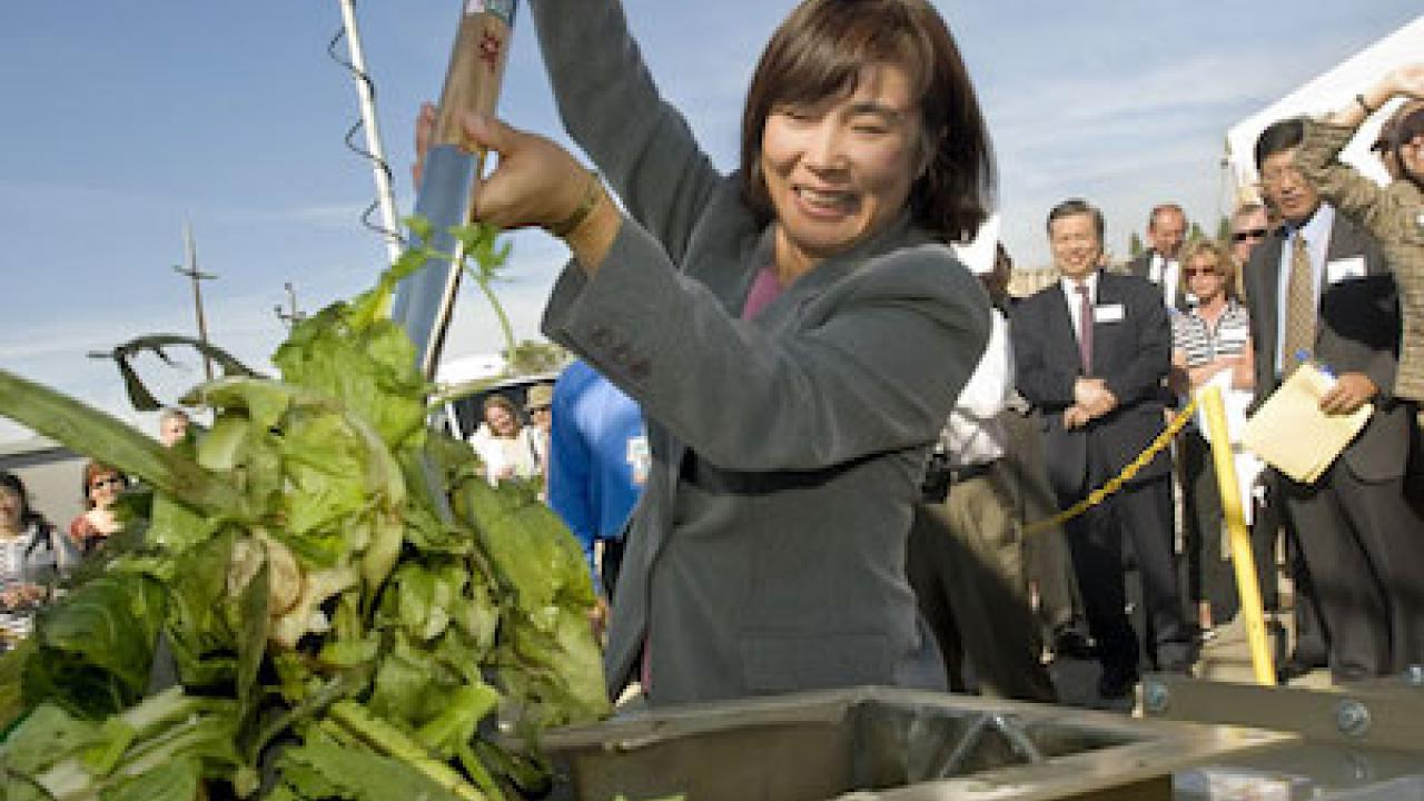 UC Davis Professor Ruihong Zhang shovels fresh table scraps from San Francisco restaurants into the biogas energy plant on the UC Davis campus.