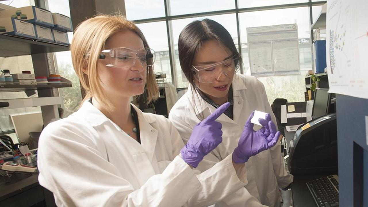 Daniela Barile and graduate student Tian Tian study milk sugar compounds