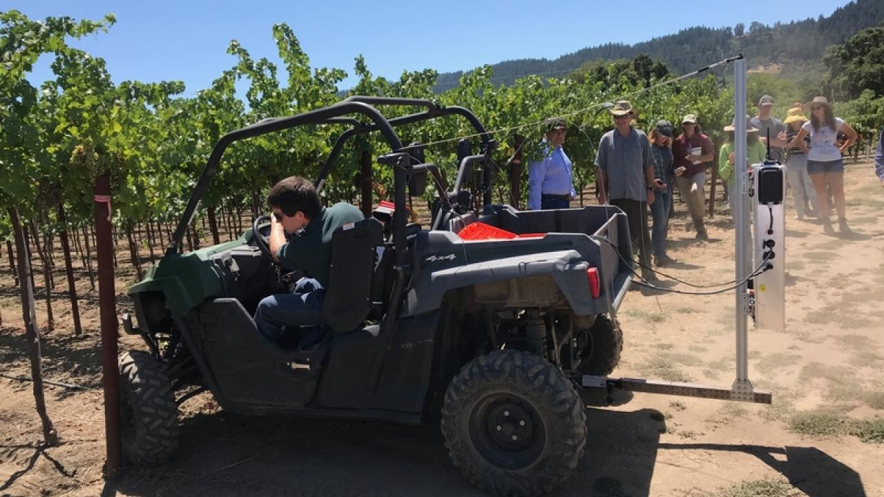 Nathan Strong, chief executive officer and president at Terroir AI, a startup company, demonstrates an automated yield count unit at UC Davis Oakville Station.The Terroir AI unit is mounted on the back an ATV. Kerana Todorv/Wine Business Monthly