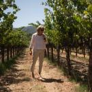 Beth Novak Milliken, Spottswoode Estate Vineyard president and CEO, walks through the vineyards in California. (Photo: Martin E. Klimek, USA TODAY)